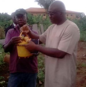Delta Govt. pledges to partner private sector to develop agricultural potentials