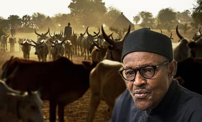 Buhari speaks on killing of Afenifere leader's daughter, Funke by suspected herdsmen