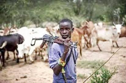 LOCALHerdsmen Have Stopped Us From Our Farms, Okoh, Delta Lawmaker Alleges